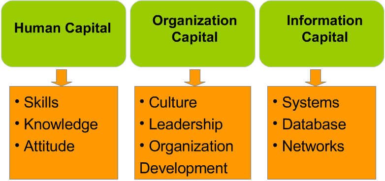 What kind of capital an organization should have